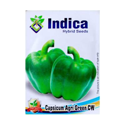 Capsicum Agri Green Seeds - Vegetable Hybrid Seeds (pack of 5)
