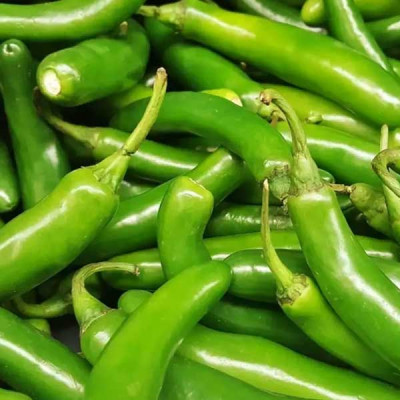 Chilli G 4 - Vegetable Seeds