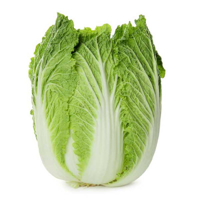 Chinese Cabbage Green - Vegetable Seeds