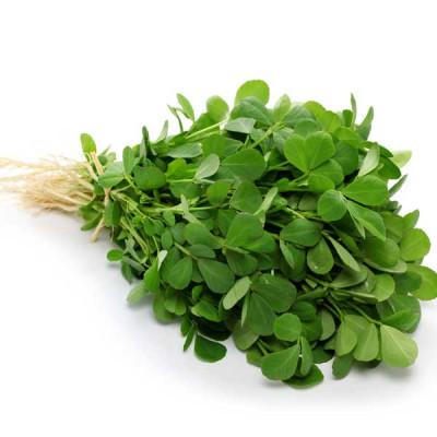 Methi Bombay Wali - Desi Vegetable Seeds