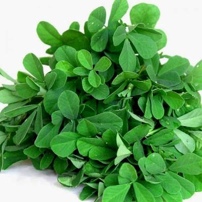 Methi Kasturi - Vegetable Seeds