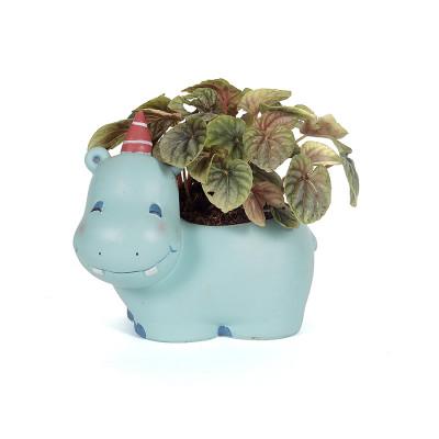 Cute Hippo Animal Planter with Peperomia caperata