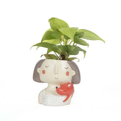 Dreaming Red Girl Design planter with Money Plant